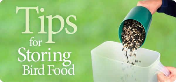 Tips for Storing Bird Food